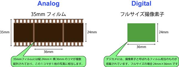 焦点距離と画角 - 画角 - パースフリークス